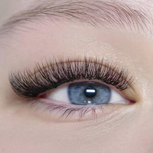 2d volume lash extensions albany newmarket henderson