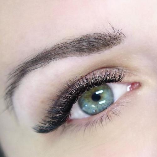 lashury volume eyelash extensions